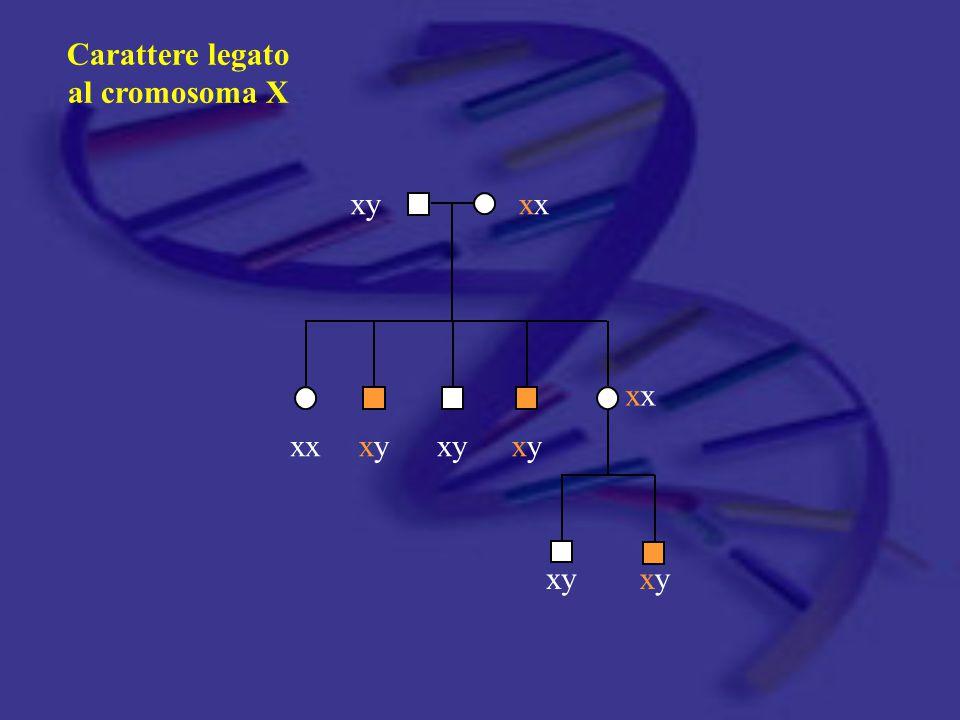 In passato In passato la genetica era confinata ad un limitato numero di condizioni rare