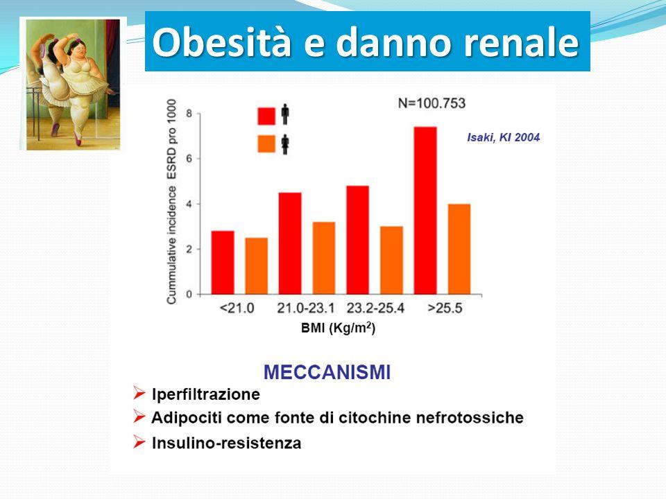 Obesità e danno renale