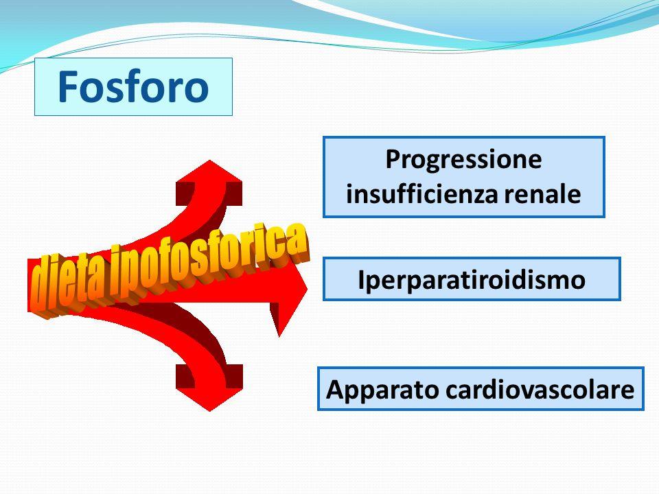 Fosforo Apparato cardiovascolare Iperparatiroidismo Progressione insufficienza renale