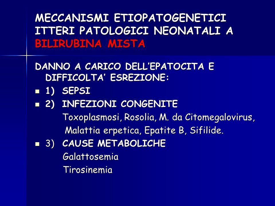 MECCANISMI ETIOPATOGENETICI ITTERI PATOLOGICI NEONATALI A BILIRUBINA MISTA DANNO A CARICO DELL'EPATOCITA E DIFFICOLTA' ESREZIONE: 1) SEPSI 1) SEPSI 2)