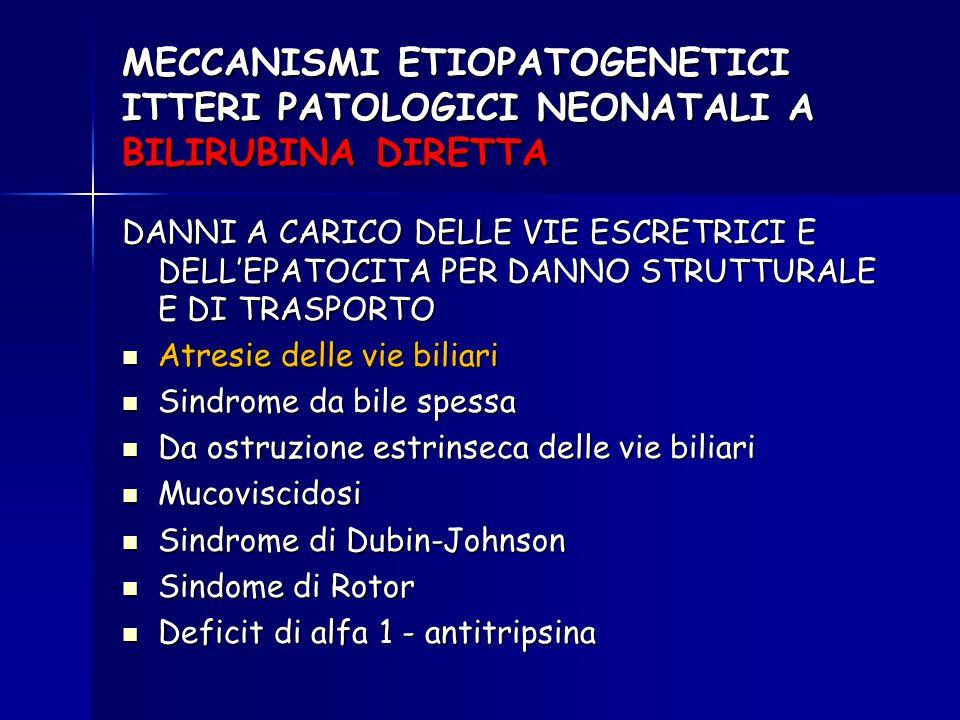MECCANISMI ETIOPATOGENETICI ITTERI PATOLOGICI NEONATALI A BILIRUBINA DIRETTA DANNI A CARICO DELLE VIE ESCRETRICI E DELL'EPATOCITA PER DANNO STRUTTURAL