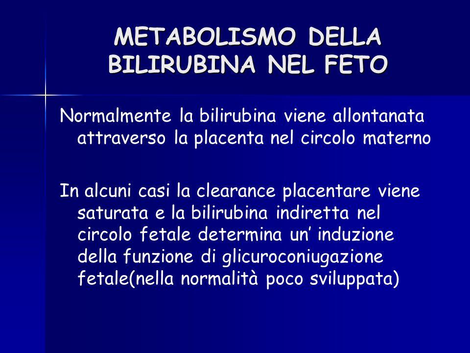 Normalmente la bilirubina viene allontanata attraverso la placenta nel circolo materno In alcuni casi la clearance placentare viene saturata e la bili