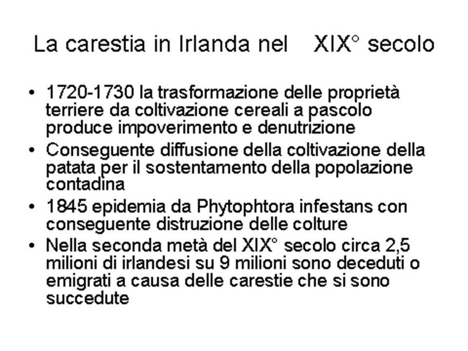 Alcool in Italia Corrao, EJPH, 2002 Mortalità attribuibile 1996: Uomini: 8.5% Donne: 1.7%