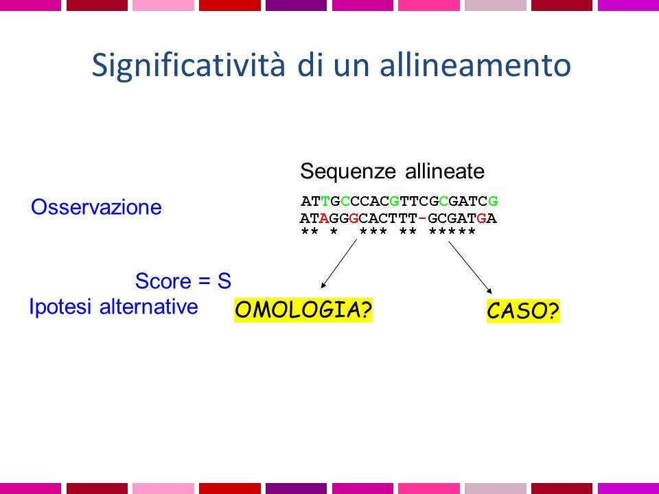 Osservazione Score = S ATAGGGCACTTT-GCGATGA ** * *** ** ***** ATTGCCCACGTTCGCGATCG Sequenze allineate Ipotesi alternative OMOLOGIA? CASO? Significativ