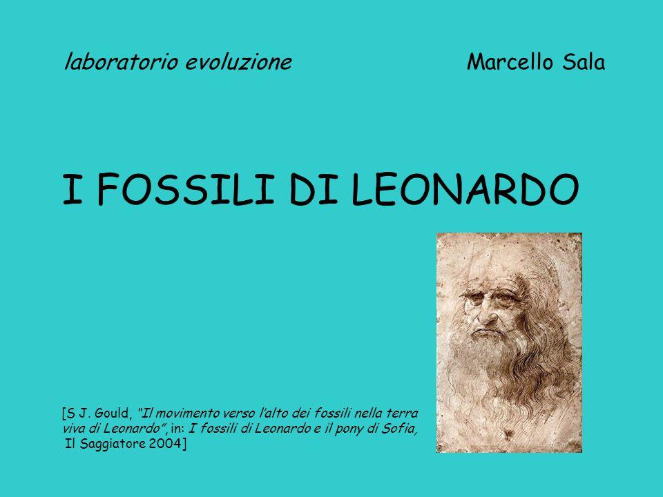 laboratorio evoluzione Marcello Sala I FOSSILI DI LEONARDO [S J.
