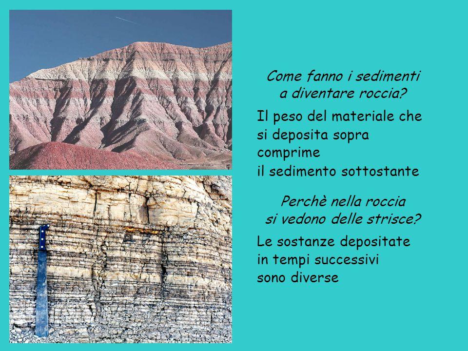 Come fanno i sedimenti a diventare roccia.