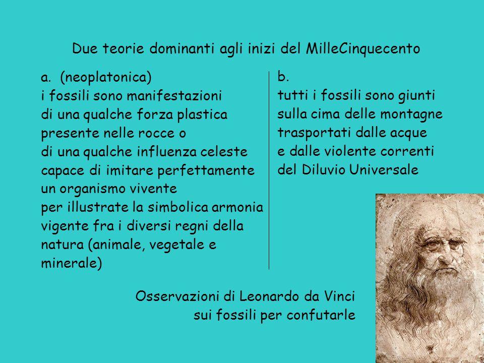 Osservazioni di Leonardo da Vinci sui fossili per confutarle Due teorie dominanti agli inizi del MilleCinquecento a.
