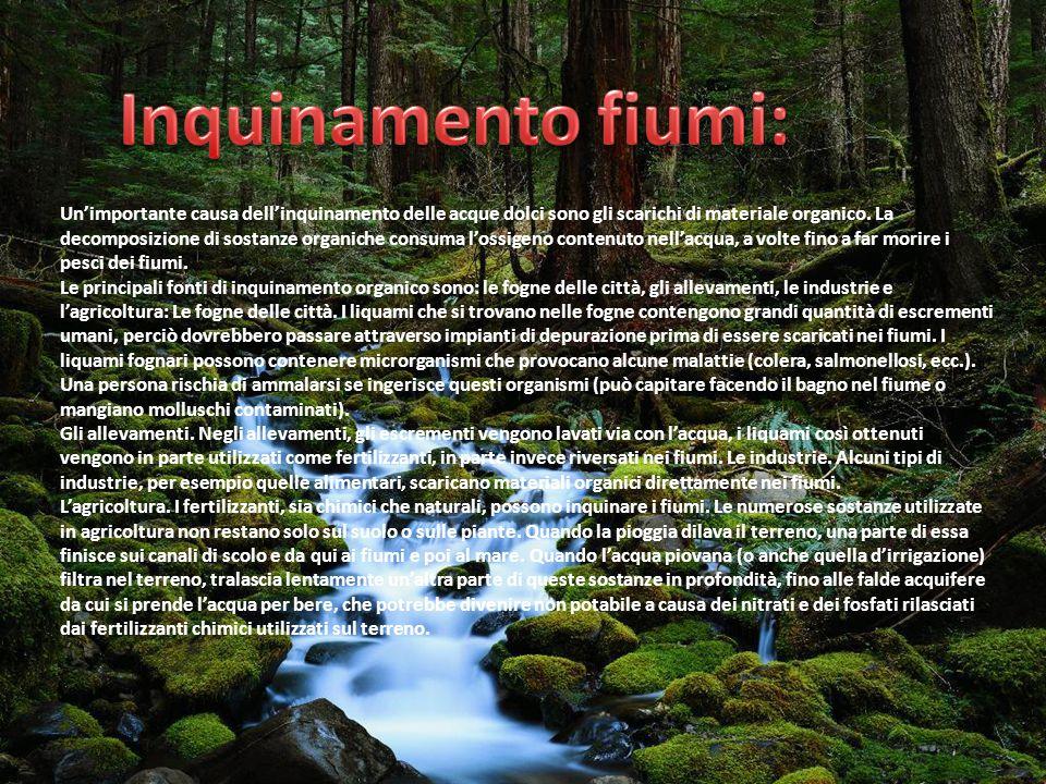 Un'importante causa dell'inquinamento delle acque dolci sono gli scarichi di materiale organico. La decomposizione di sostanze organiche consuma l'oss