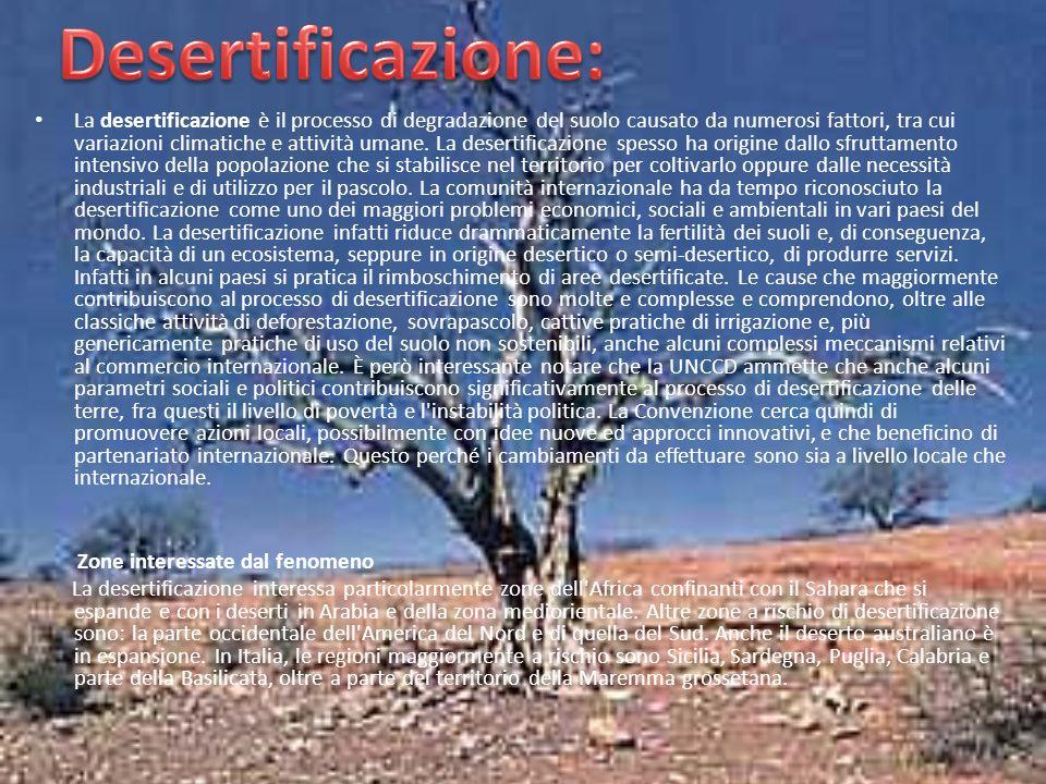 La desertificazione è il processo di degradazione del suolo causato da numerosi fattori, tra cui variazioni climatiche e attività umane. La desertific