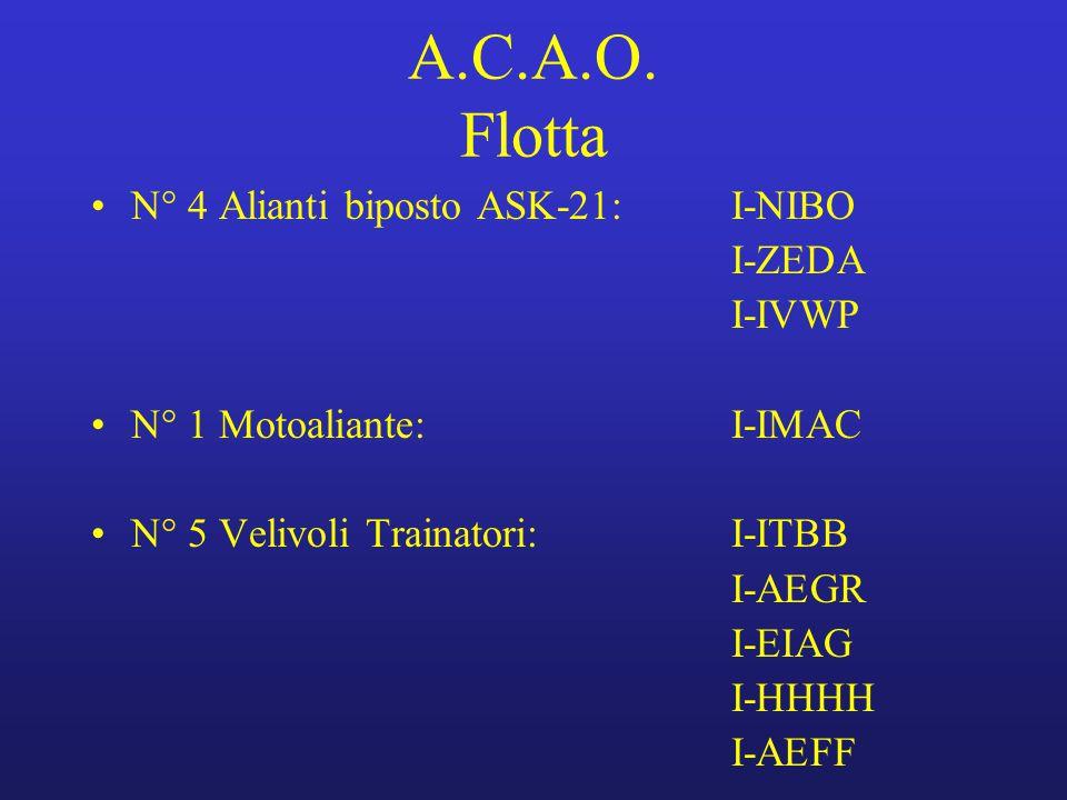 A.C.A.O. Flotta N° 4 Alianti biposto ASK-21:I-NIBO I-ZEDA I-IVWP N° 1 Motoaliante:I-IMAC N° 5 Velivoli Trainatori:I-ITBB I-AEGR I-EIAG I-HHHH I-AEFF