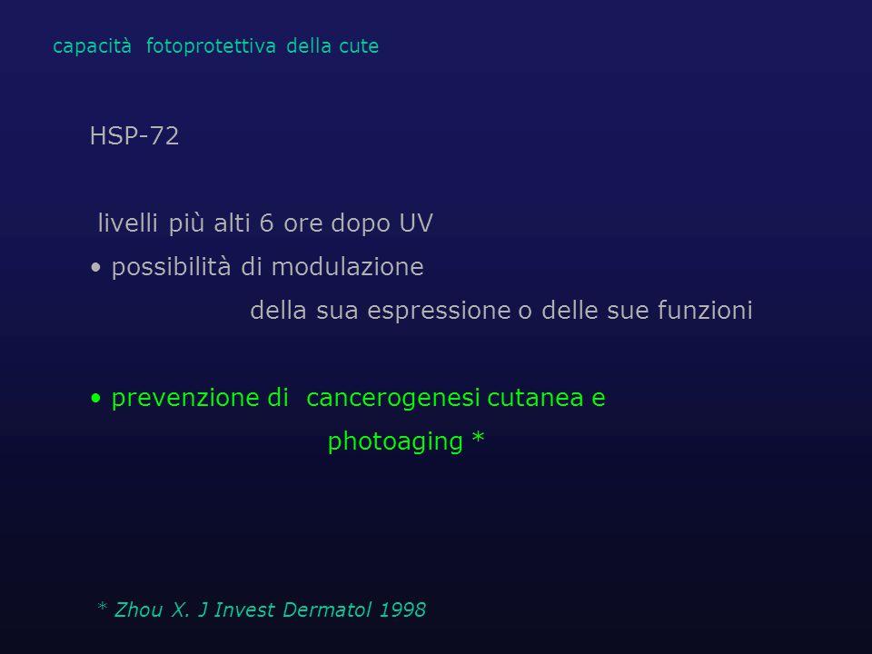 HSP-72 livelli più alti 6 ore dopo UV possibilità di modulazione della sua espressione o delle sue funzioni prevenzione di cancerogenesi cutanea e photoaging * * Zhou X.