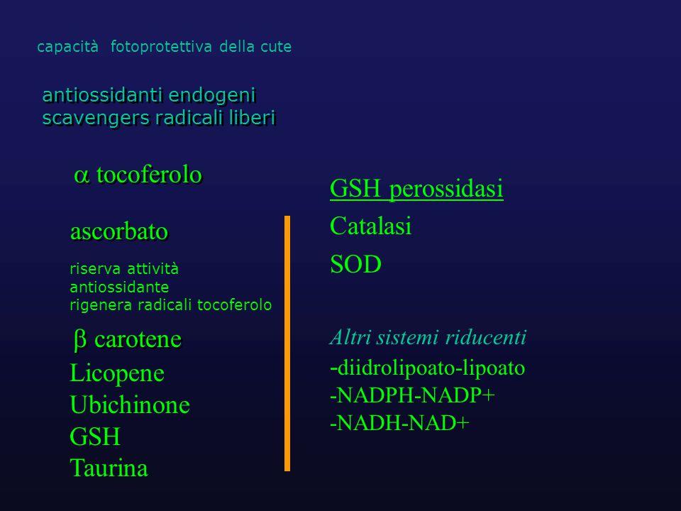  tocoferolo ascorbato antiossidanti endogeni scavengers radicali liberi antiossidanti endogeni scavengers radicali liberi  carotene capacità fotoprotettiva della cute riserva attività antiossidante rigenera radicali tocoferolo Licopene Ubichinone GSH Taurina GSH perossidasi Catalasi SOD Altri sistemi riducenti - diidrolipoato-lipoato -NADPH-NADP+ -NADH-NAD+