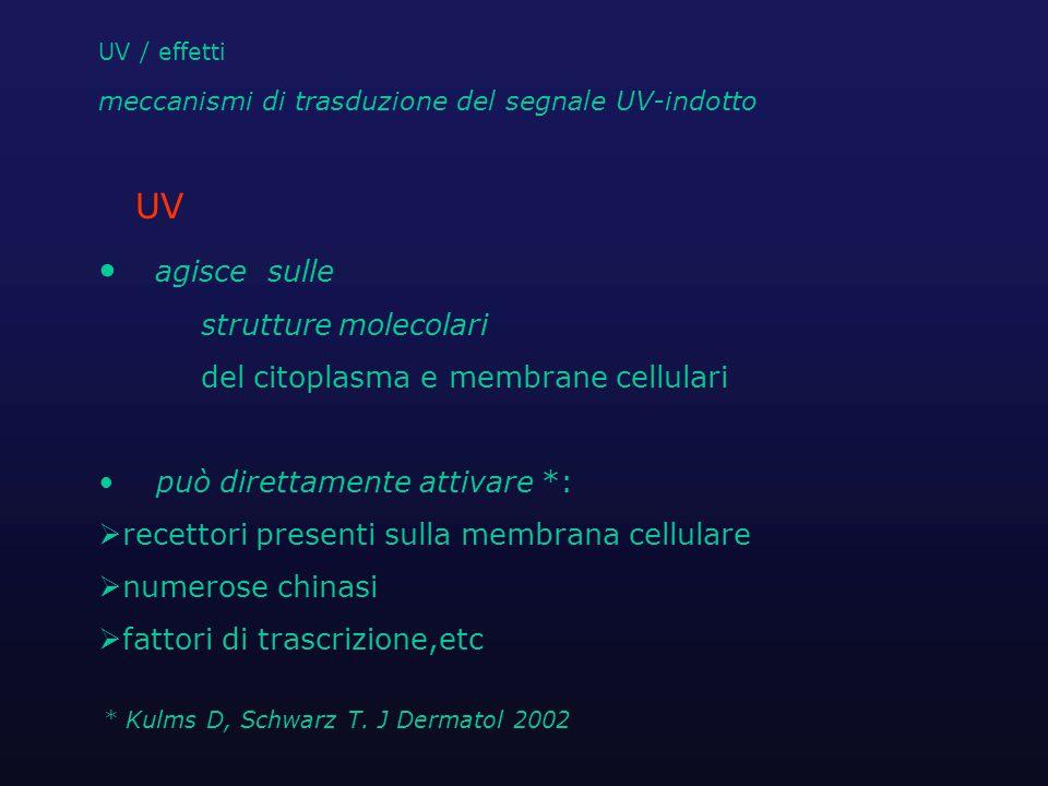UV / effetti eventi molecolari indotti da UV causa delle specifiche alterazioni cliniche ed istologiche fotodanno del DNA Specie Reattive Ossigeno (ROS) (ossigeno singoletto, perossido di H, anione superossido)