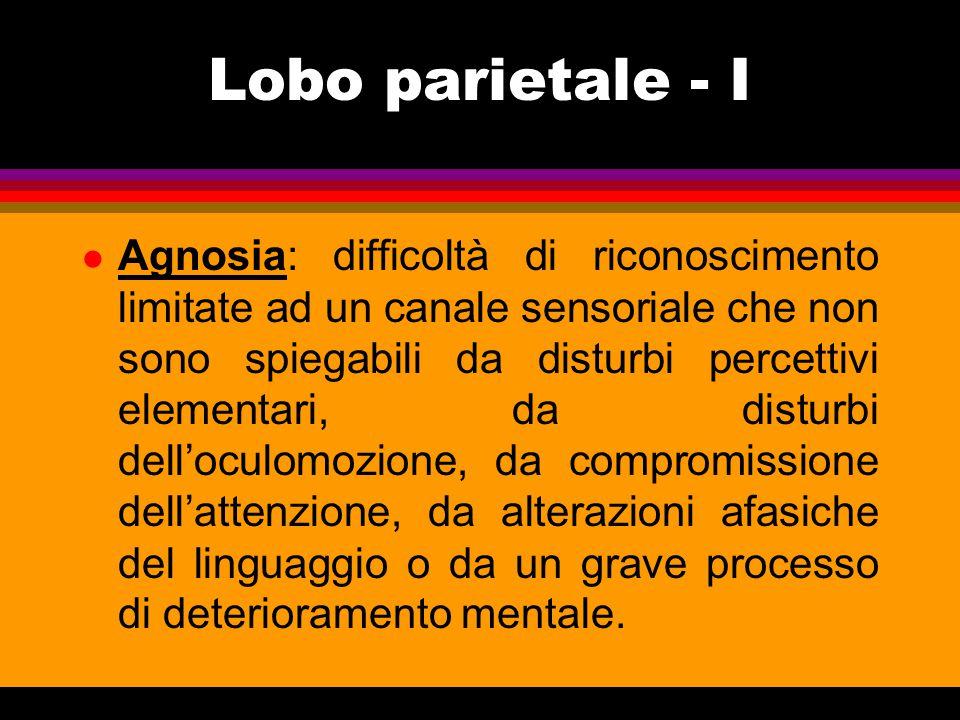 LOBO PARIETALE - II: NEGLECT (NSU) l Solitamente dopo lesione al lobulo parietale inferiore destro: mancata percezione e rappresentazione dello spazio di sinistra l Il p.