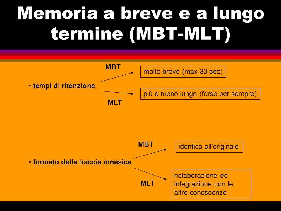 Suddivisioni della MLT Memoria per le procedure motorie Procedurale (o implicita) Dichiarativa (o esplicita) MLT semantica episodica Memoria del significato e delle relazione semantiche delle cose (conosc.