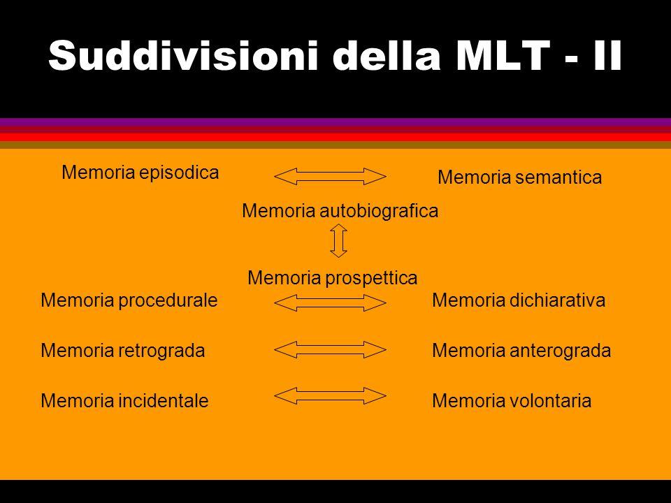 Specializzazione emisferica  Fra i due emisferi cerebrali vi sono notevoli differenze anatomo-funzionali, che producono diversi tipi di consapevolezza.