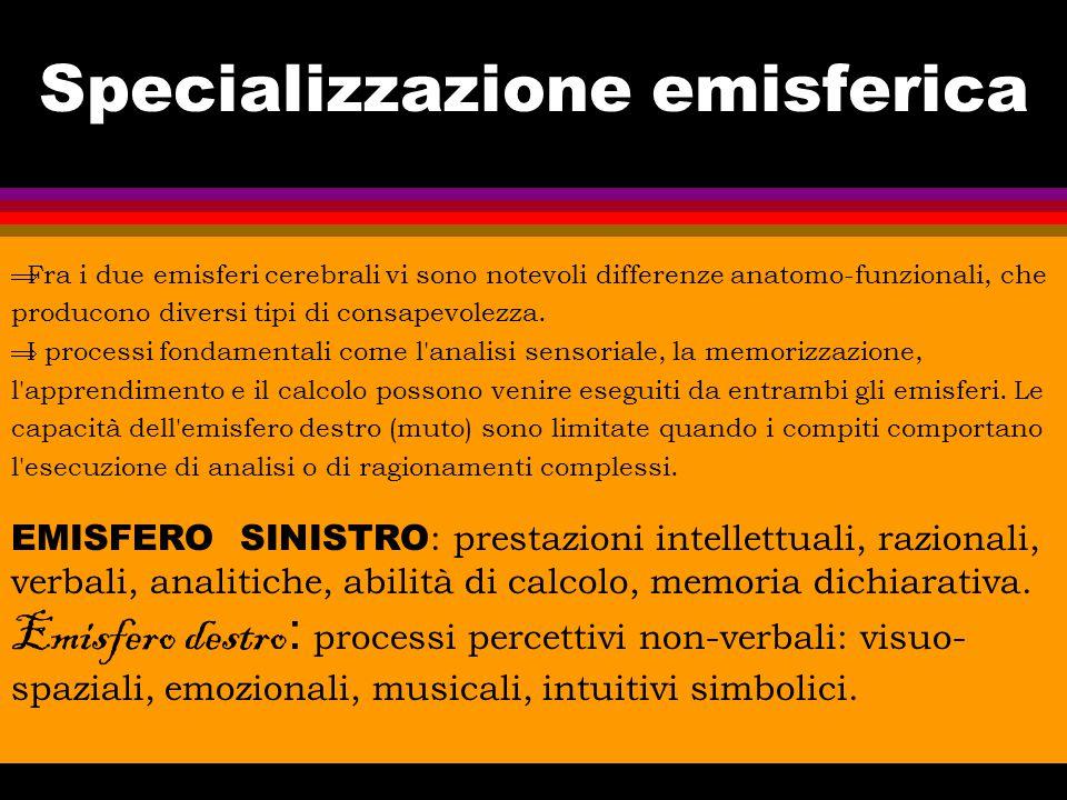 Siti internet Italia l www.neuropsicologia-span.it l www.sinp-web.org l www.neuropsy.it l www.neuropsicologia.it