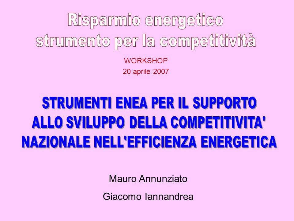WORKSHOP 20 aprile 2007 Mauro Annunziato Giacomo Iannandrea