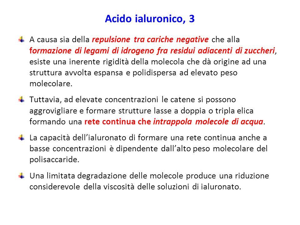 Acido ialuronico, 3 A causa sia della repulsione tra cariche negative che alla formazione di legami di idrogeno fra residui adiacenti di zuccheri, esi
