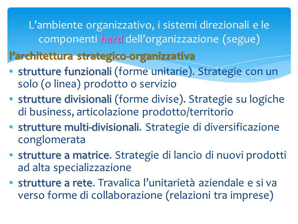 hard L'ambiente organizzativo, i sistemi direzionali e le componenti hard dell'organizzazione (segue) l'architettura strategico-organizzativa struttur