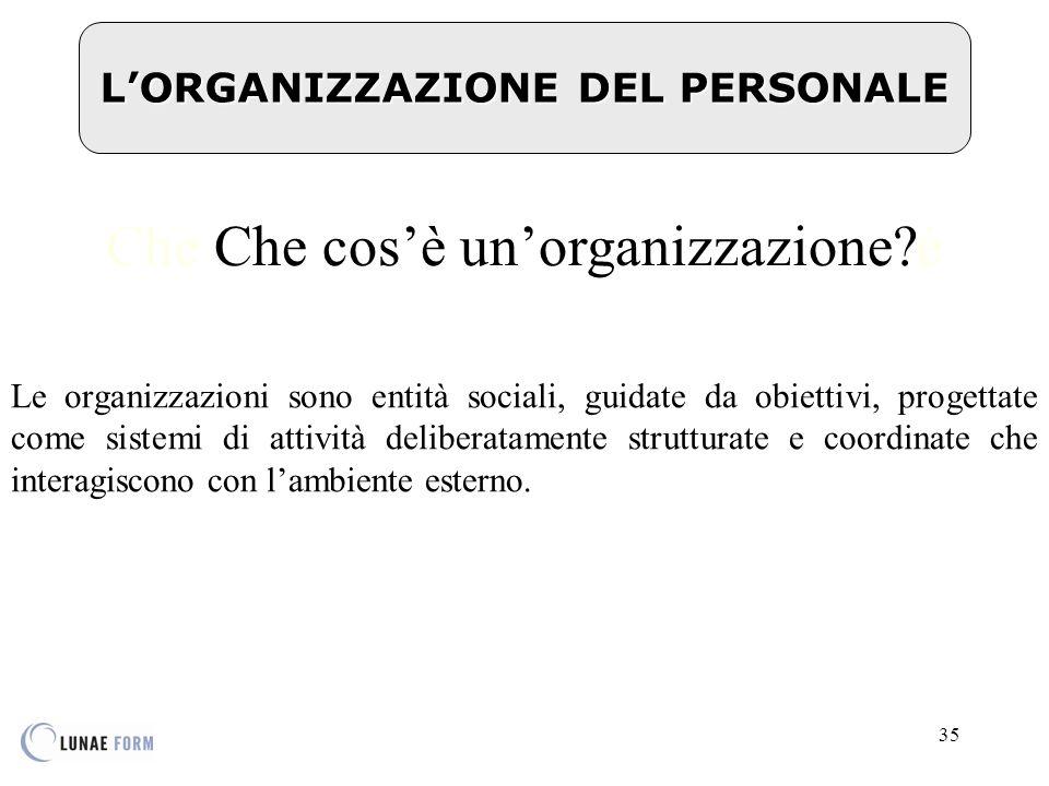 35 L'ORGANIZZAZIONE DEL PERSONALE Che Che cos'è un'organizzazione?è Le organizzazioni sono entità sociali, guidate da obiettivi, progettate come sistemi di attività deliberatamente strutturate e coordinate che interagiscono con l'ambiente esterno.