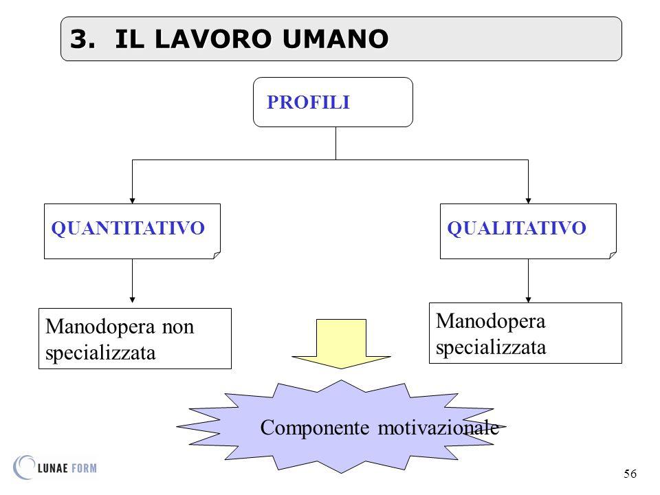56 PROFILI QUALITATIVOQUANTITATIVO Componente motivazionale 3.