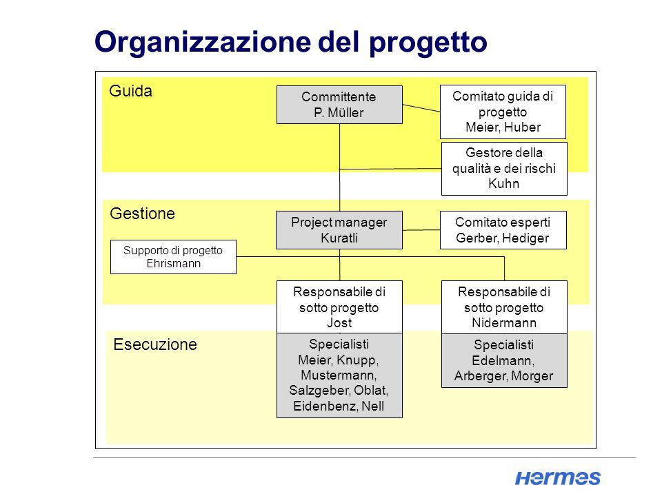 Organizzazione del progetto Esecuzione Gestione Guida Committente P.
