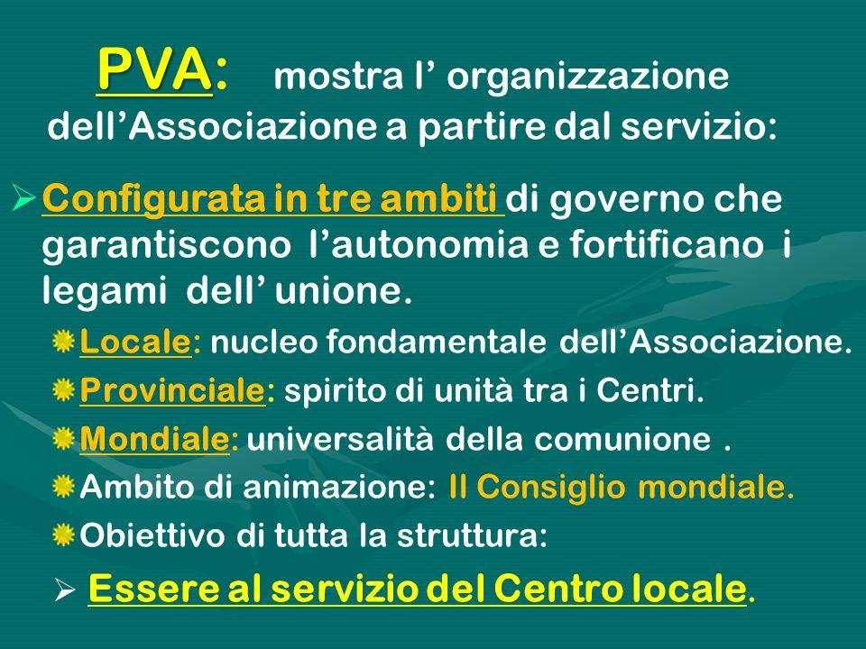 PVA PVA: mostra l' organizzazione dell'Associazione a partire dal servizio:  Configurata in tre ambiti di governo che garantiscono l'autonomia e fort