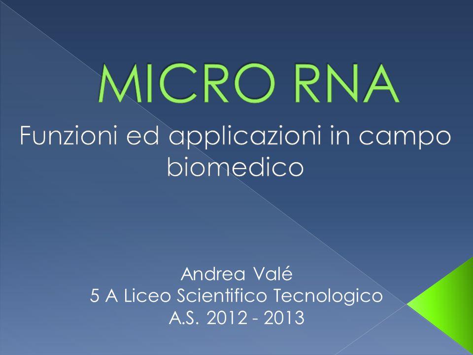 Andrea Valé 5 A Liceo Scientifico Tecnologico A.S. 2012 - 2013
