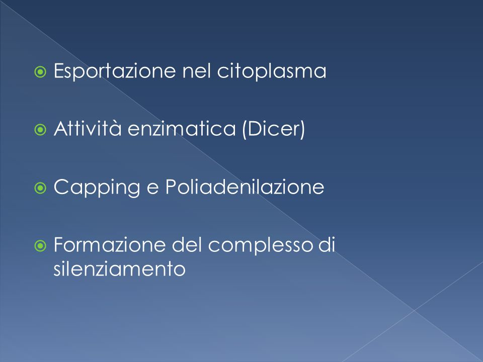  Esportazione nel citoplasma  Attività enzimatica (Dicer)  Capping e Poliadenilazione  Formazione del complesso di silenziamento