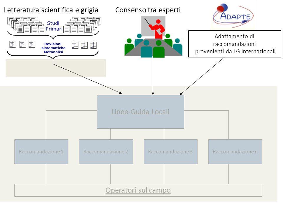 Linee-Guida Locali Raccomandazione 1Raccomandazione 2Raccomandazione 3Raccomandazione n Letteratura scientifica e grigia Operatori sul campo Consenso