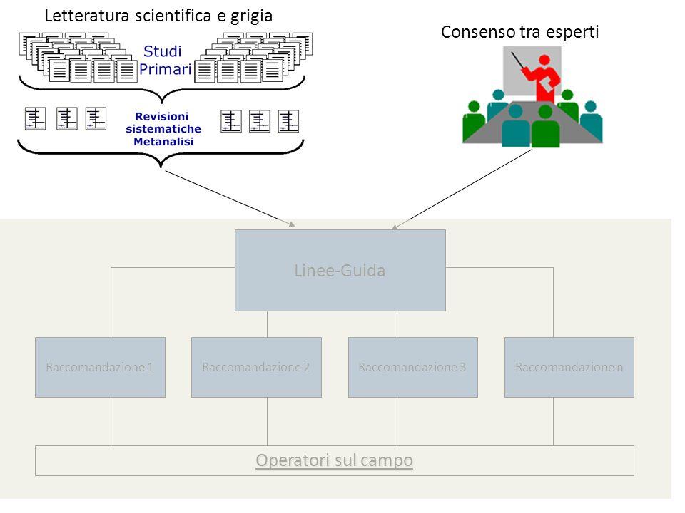 Linee-Guida Raccomandazione 1Raccomandazione 2Raccomandazione 3Raccomandazione n Letteratura scientifica e grigia Operatori sul campo Consenso tra esp
