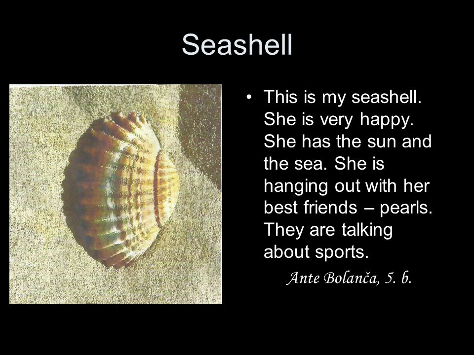 Seashell This is my seashell. She is very happy. She has the sun and the sea. She is hanging out with her best friends – pearls. They are talking abou