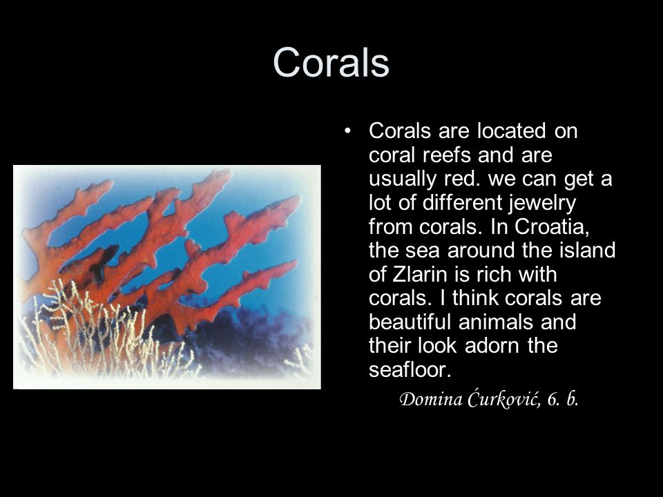 Corals Corals are located on coral reefs and are usually red. we can get a lot of different jewelry from corals. In Croatia, the sea around the island