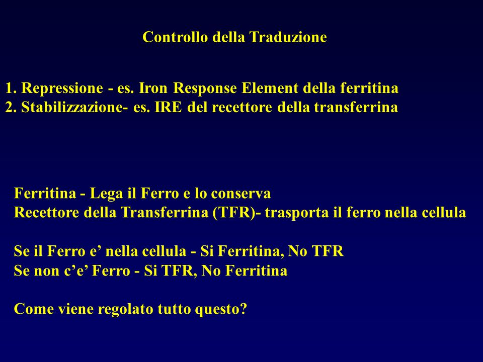 Controllo della Traduzione 1.Repressione - es. Iron Response Element della ferritina 2.