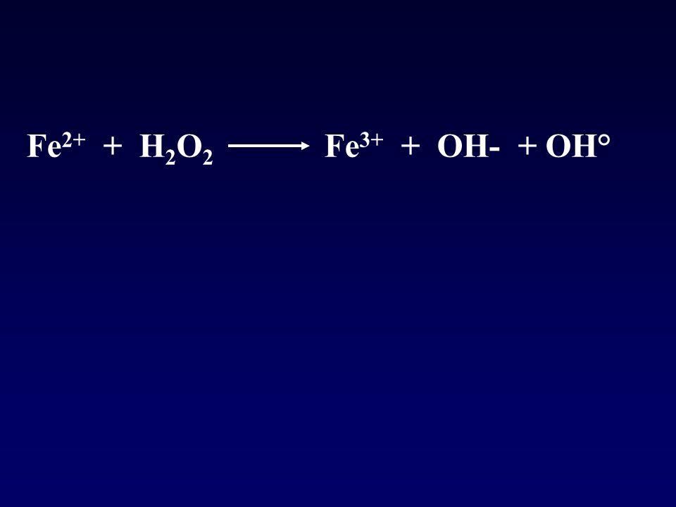 Fe 2+ + H 2 O 2 Fe 3+ + OH- + OH°
