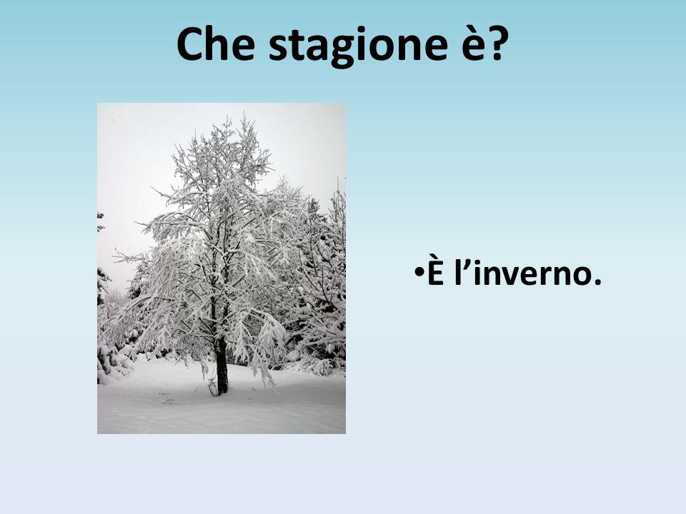 È l'inverno.