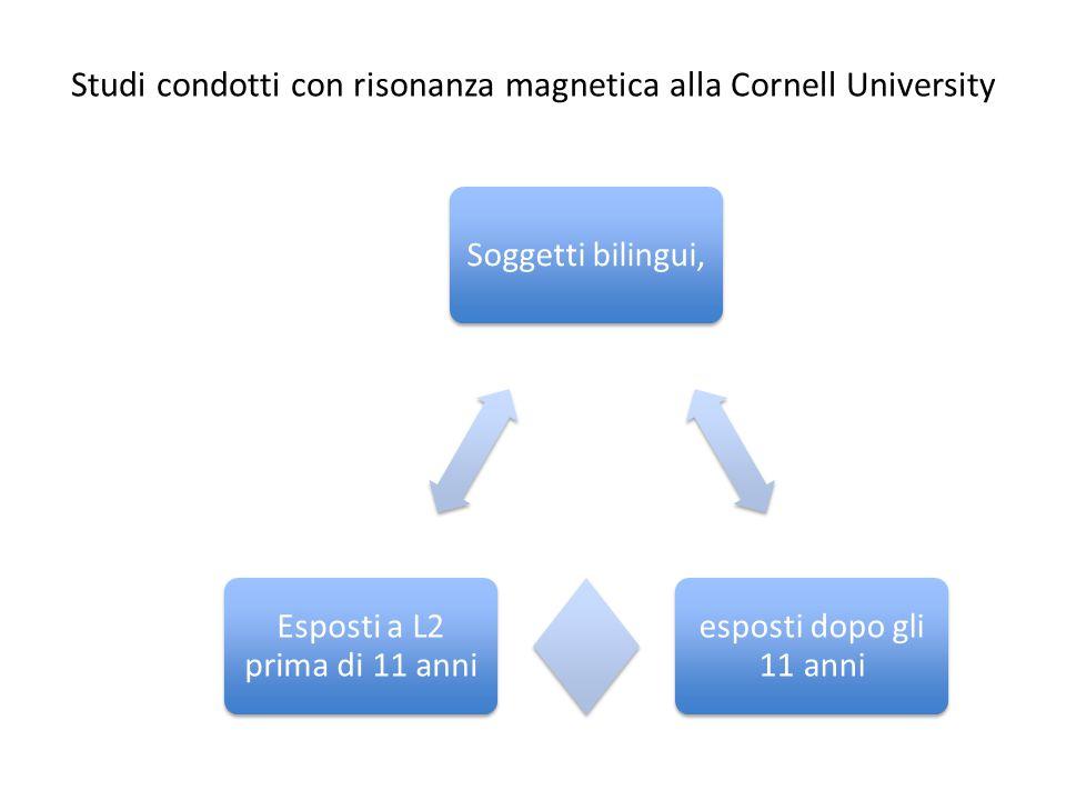 Studi condotti con risonanza magnetica alla Cornell University Soggetti bilingui, esposti dopo gli 11 anni Esposti a L2 prima di 11 anni