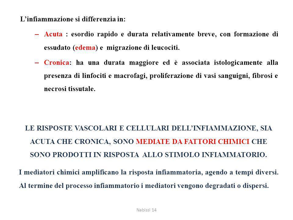 L'infiammazione si differenzia in: – Acuta : esordio rapido e durata relativamente breve, con formazione di essudato (edema) e migrazione di leucociti.