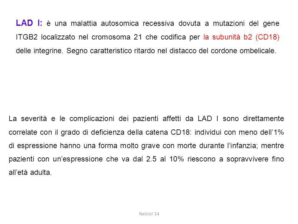 LAD I: è una malattia autosomica recessiva dovuta a mutazioni del gene ITGB2 localizzato nel cromosoma 21 che codifica per la subunità b2 (CD18) delle integrine.