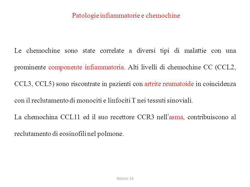 Patologie infiammatorie e chemochine Le chemochine sono state correlate a diversi tipi di malattie con una prominente componente infiammatoria.