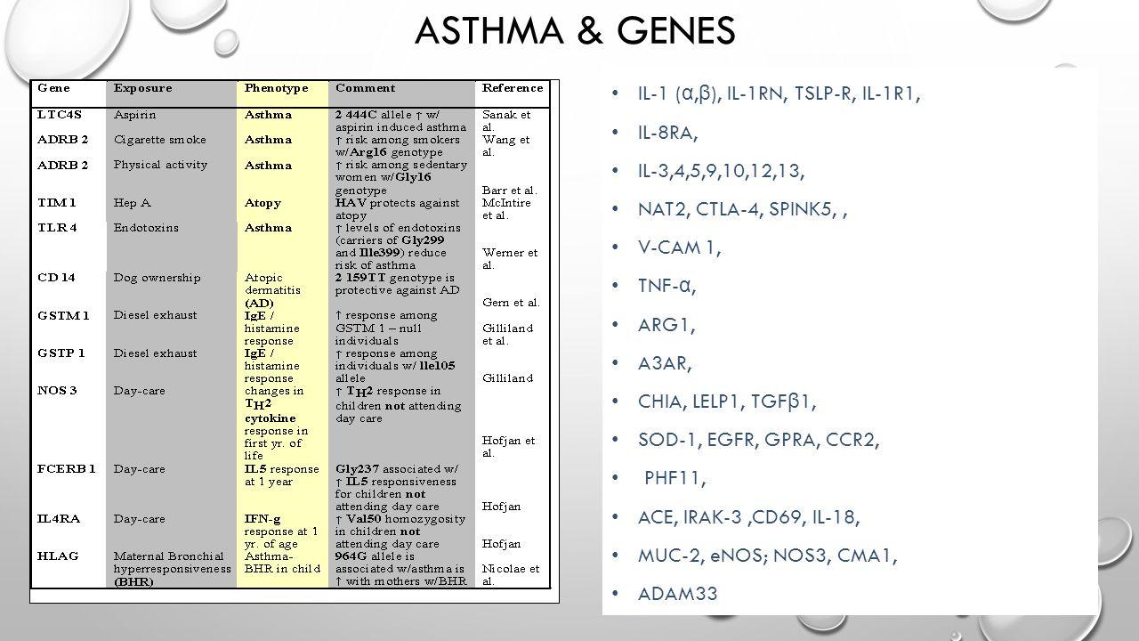 ASTHMA & GENES IL-1 ( α, β ), IL-1RN, TSLP-R, IL-1R1, IL-8RA, IL-3,4,5,9,10,12,13, NAT2, CTLA-4, SPINK5,, V-CAM 1, TNF- α, ARG1, A3AR, CHIA, LELP1, TGF β 1, SOD-1, EGFR, GPRA, CCR2, PHF11, ACE, IRAK-3,CD69, IL-18, MUC-2, eNOS; NOS3, CMA1, ADAM33