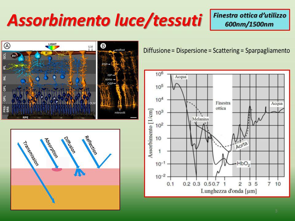 Assorbimento luce/tessuti 3 Finestra ottica d'utilizzo 600nm/1500nm 600nm/1500nm
