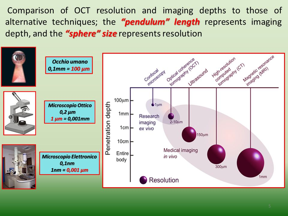 16 Optical Coherence Microscopy (OCM) combines the coherent detection methods of OCT with confocal microscopy.