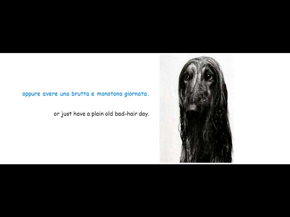 oppure avere una brutta e monotona giornata. or just have a plain old bad-hair day.
