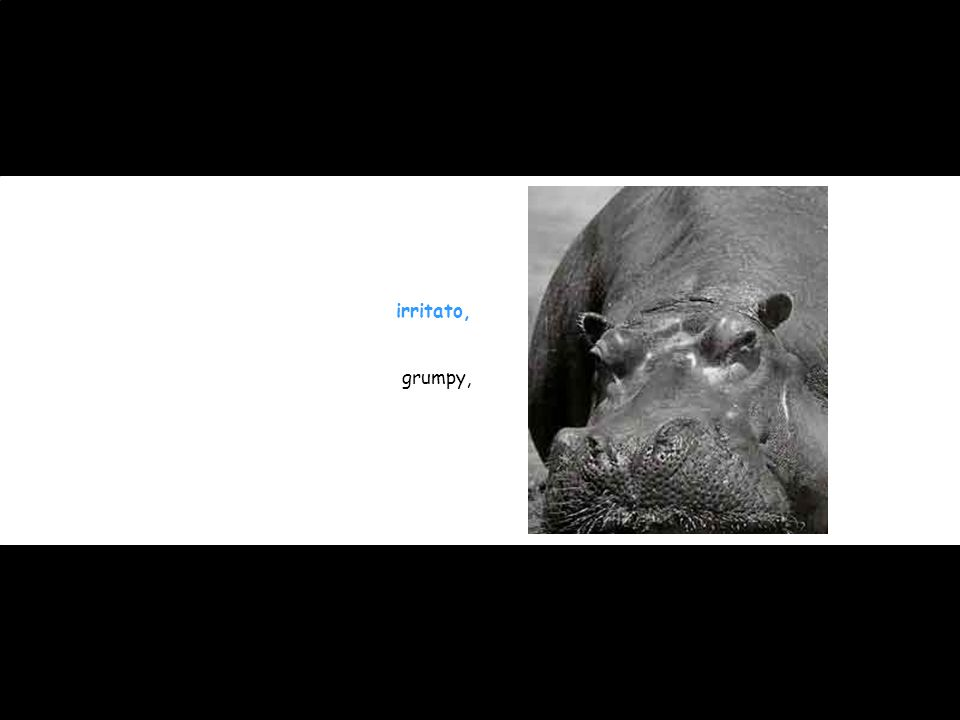irritato, grumpy,