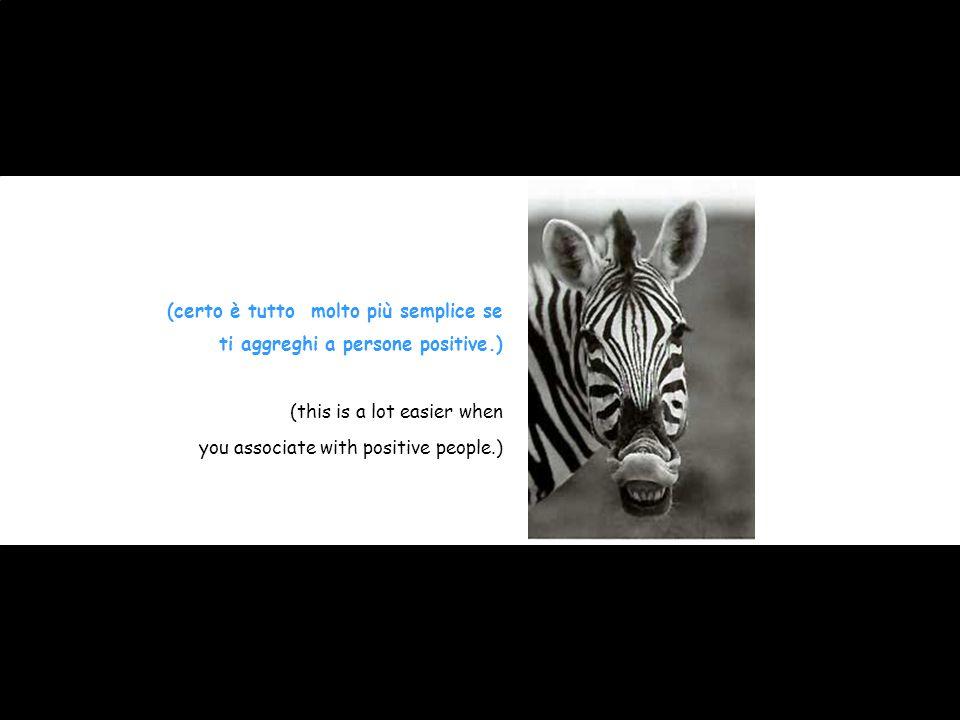(certo è tutto molto più semplice se ti aggreghi a persone positive.) (this is a lot easier when you associate with positive people.)