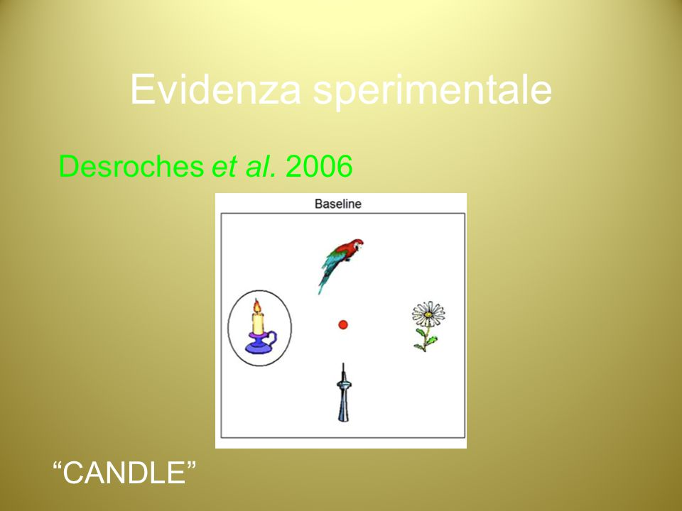"Evidenza sperimentale Desroches et al. 2006 ""CANDLE"""