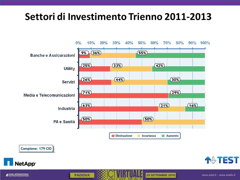 Settori di Investimento Trienno 2011-2013
