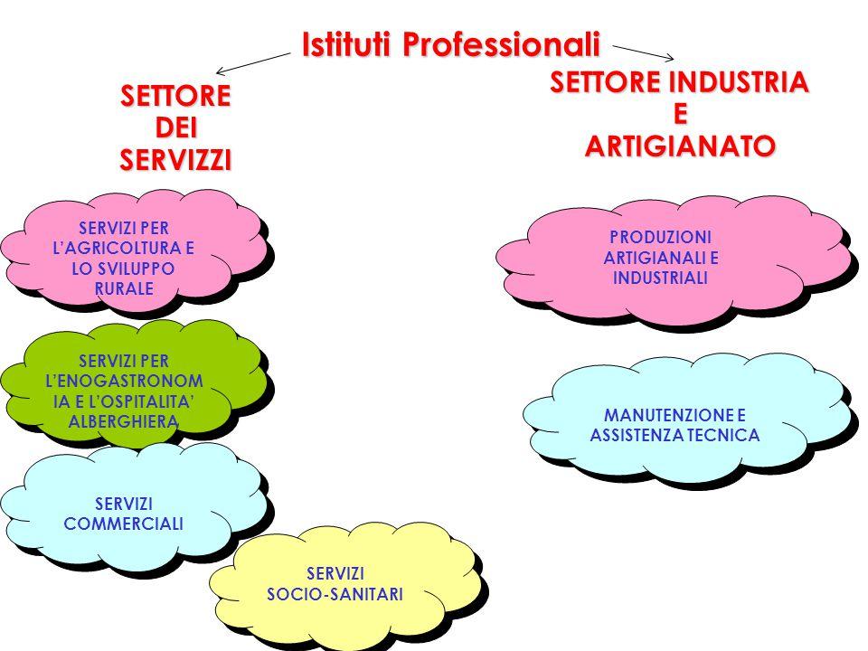 Istituti Professionali SERVIZI SOCIO-SANITARI SERVIZI SOCIO-SANITARI SERVIZI PER L'AGRICOLTURA E LO SVILUPPO RURALE SERVIZI PER L'ENOGASTRONOM IA E L'